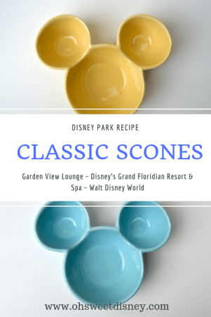 Disney Park Recipe-48