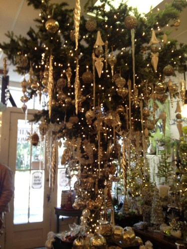 The Shop at Micanopy FL