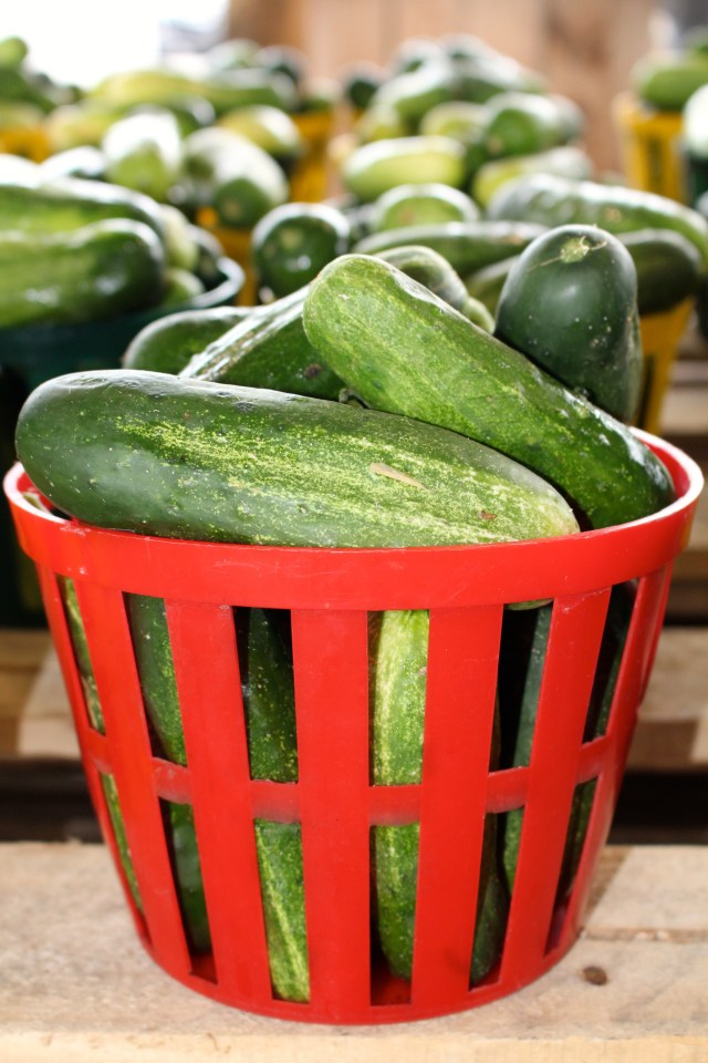 Red basket of cucumbers