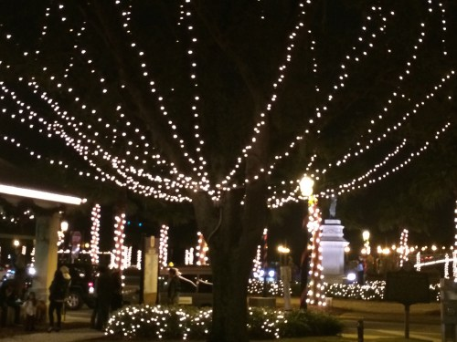 Lighted trees, shrubbery, and buildings in St. Augustine, FL