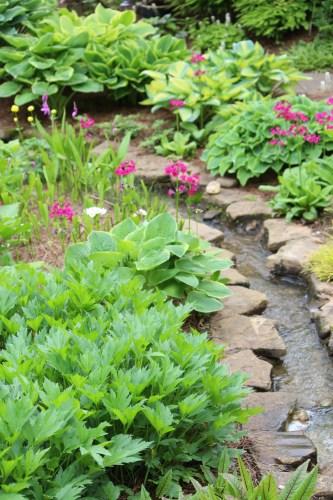 Beautiful pathway with plantings by Sandi Burdick