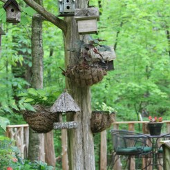Birdhouses and baskets at Suzie Hall's garden