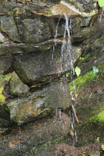 Waterfalls at home of Dr. Alan Solomon, Knoxville