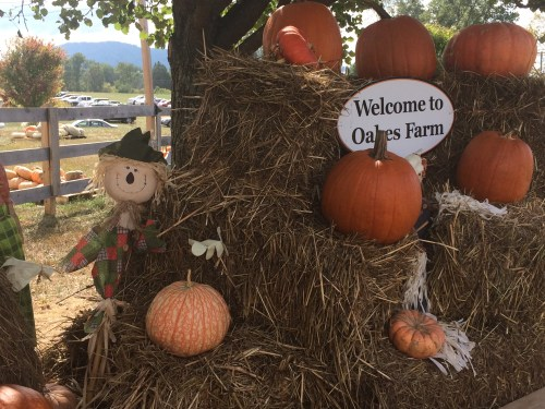 "You can wave at the scarecrows or have your picture ""took"" at Oakes Farm!"