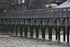 A pier in South Carolina washed with green.