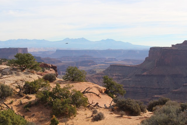 Many viewing points allow you to see into the distance as well as into the deep crevices at Canyonlands.