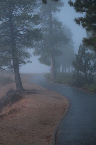Foggy pathway from The Lodge at Bryce to the rim.