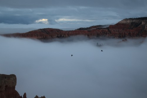 Early morning peek at Bryce Canyon