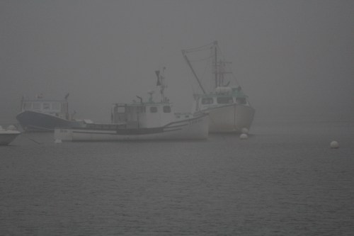 Lobster boats in the fog: Searsport, Maine
