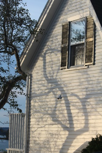 It almost looks as if someone drew these fancy branches onto this house facing the waterfront.