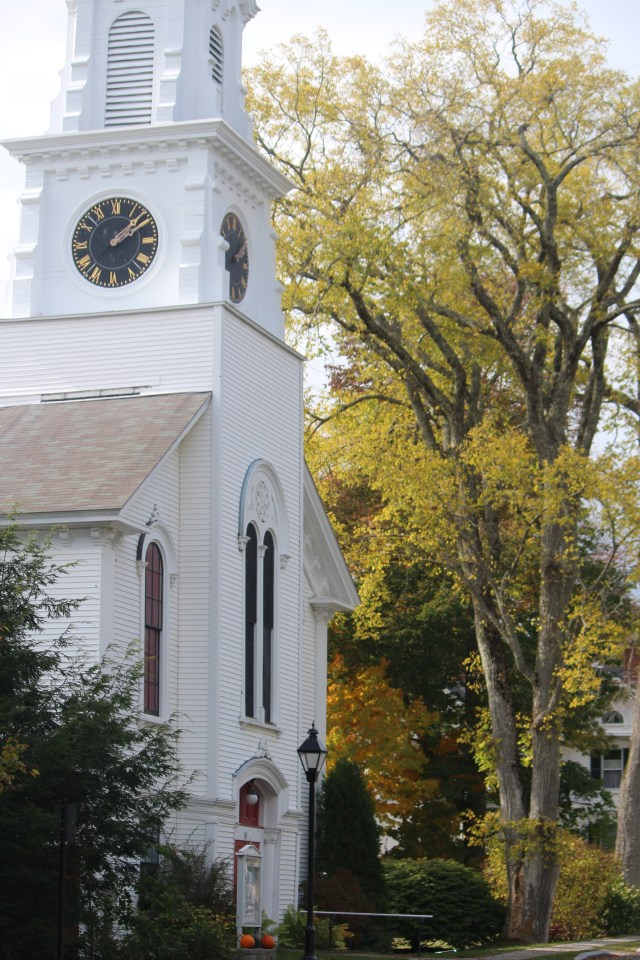 An ancient elm stands almost as tall as the steeple on Trinitarian Congregational Parish of Castine.