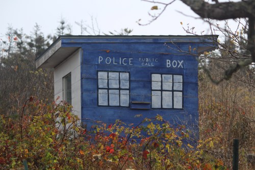 Island humor: shed painted as Police Box.
