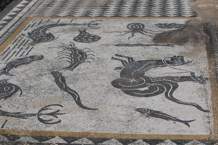 Orpheus charms the animals in this mosaic from a floor at Volubilis