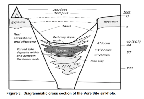 Cutaway of Vore Site sinkhole