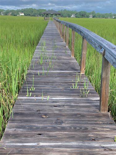 Long boardwalk to crab dock, Pawleys Island SC