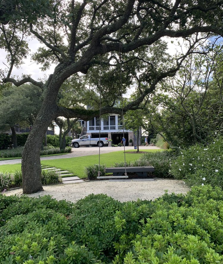 Live oaks and southern plantings, Pawleys Island SC