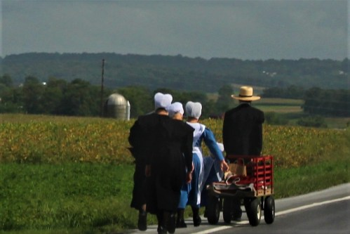 Lancaster Co, PA: Amish family