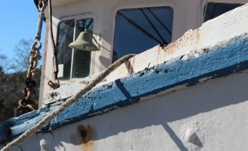 Blue & White Boat, Mill Pond, Apalachicola, FL