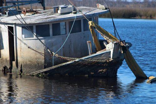 Shipwreck, Apalachicola, FL