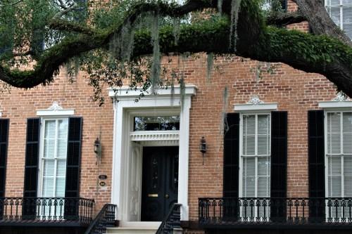 Savannah, GA: home with live oak tree, resurrection fern