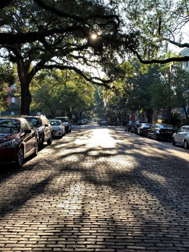 Savannah, GA: Jones Street paved with brick, lined with trees