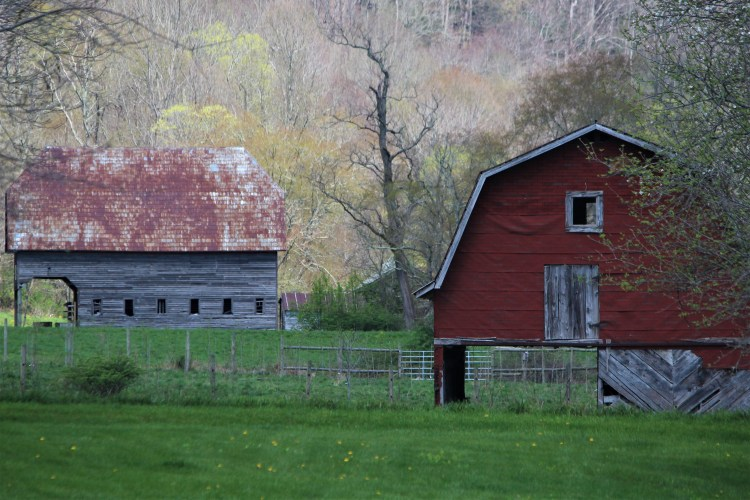 Two country buildings, Valle Crucis, NC