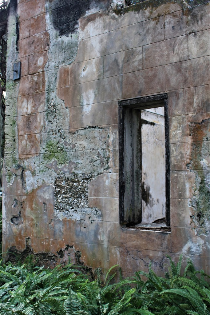 Window at Retreat Hospital ruins, Sea Island, GA