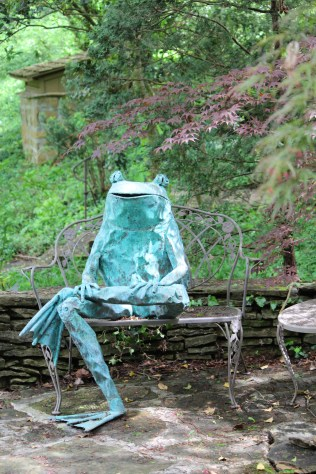 Froggie takes a rest in Dr. Solomon's garden