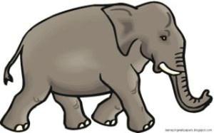 elephantClip