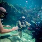 Seapro divers underwater dive skills