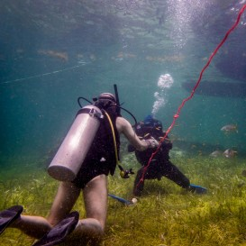 PADI certification open water dive test