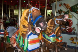 One of the horses at Central Park Carousel