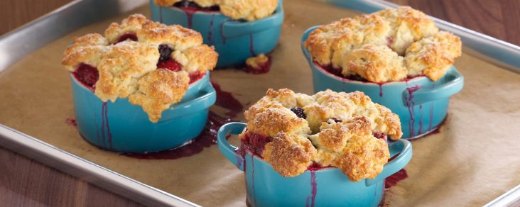 cropped-bumbleberry-cobbler1.jpg