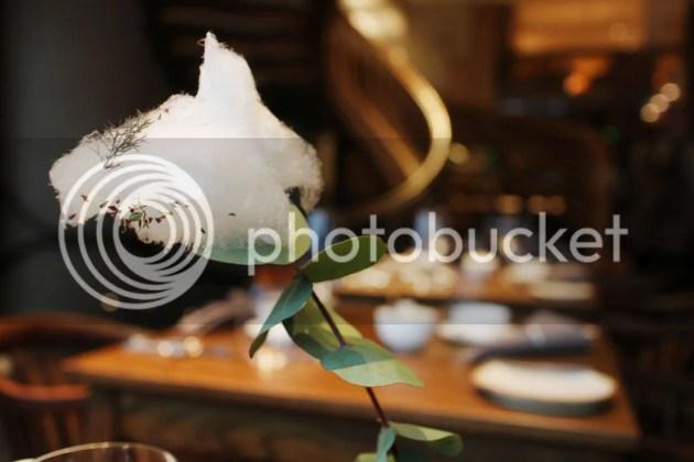 photo Hide Afternoon Tea 3_zpsoq1fpufw.jpg