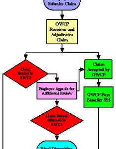 Exhibit flow chart employee submits claim owcp receives and adjundiates if also oig audit report rh justice