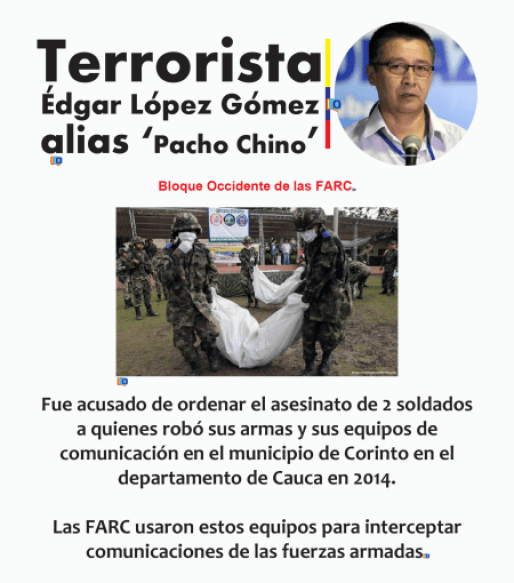 pachochino2
