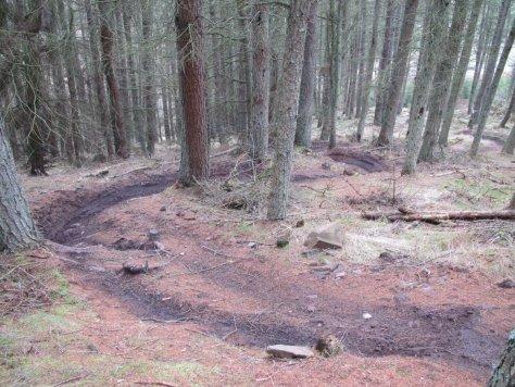 Bike-chewed path