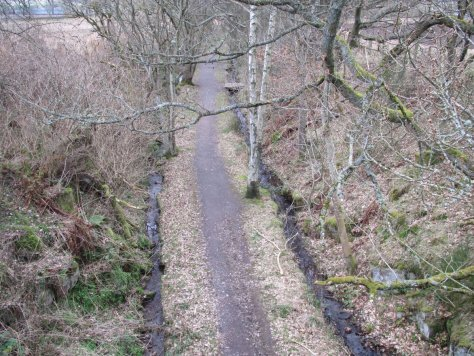 Looking down from the bridge into the railway cutting