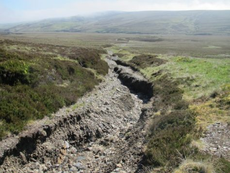 Track eroded by water in Black Water valley