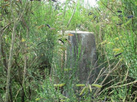 Trig point, Bandirran Hill