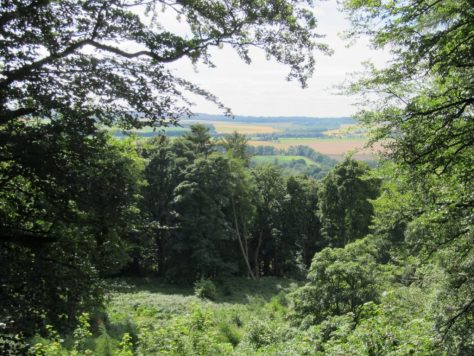 View from Fothringham Hill summer-house folly