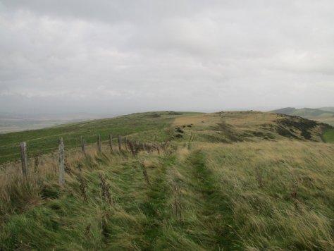 Back Drum looking towards Castleward