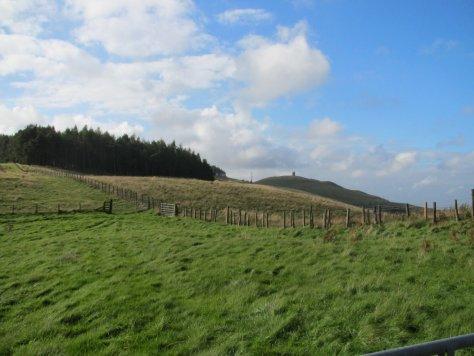 Kinpurney Hill from fields below Henderston Hill