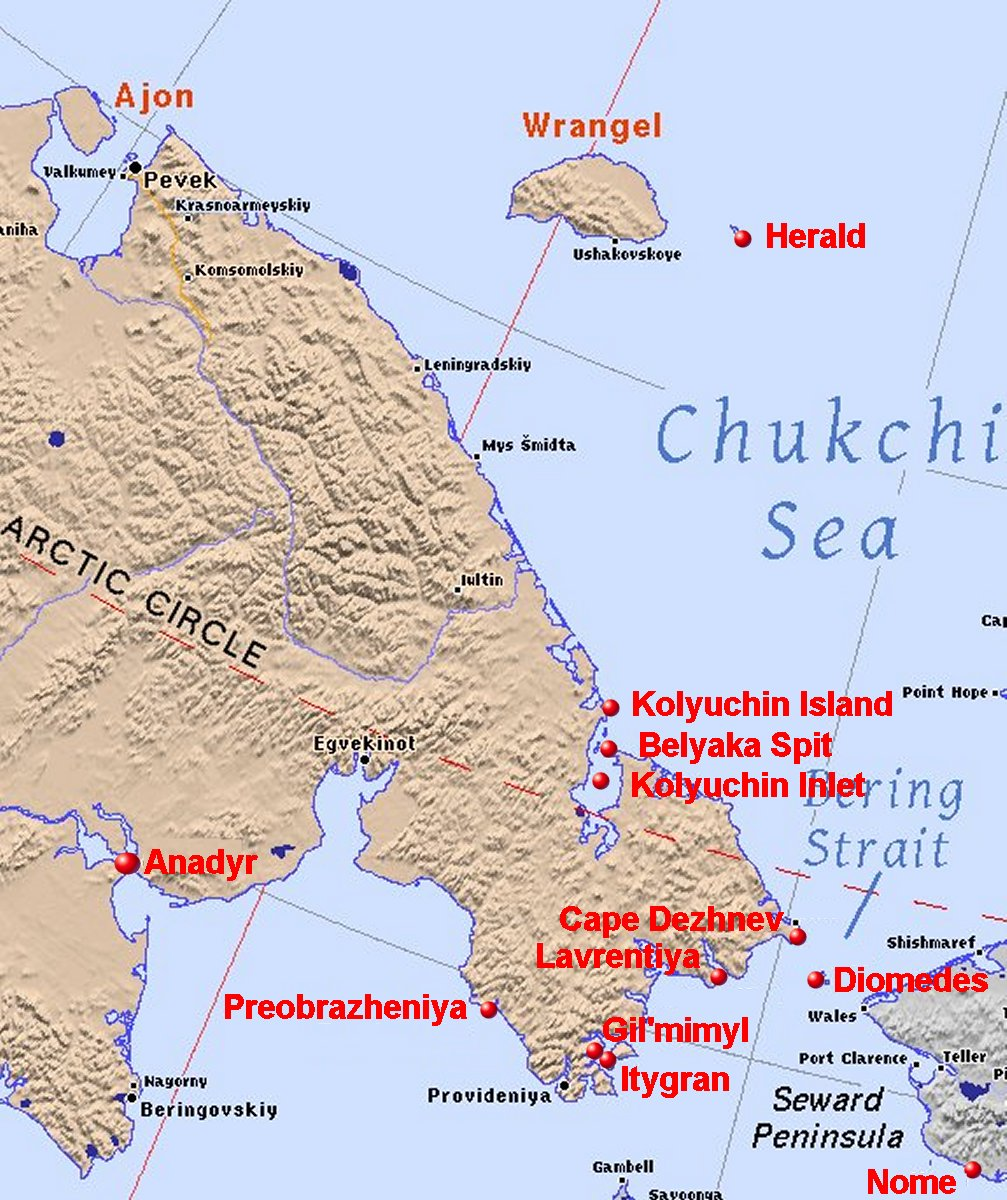 On the coasts of the Chukotka Peninsula, discovered huge sea snakes from the US