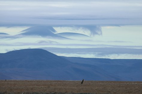 Orographic cloud at Dream Head, Wrangel Island