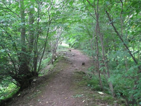 The Den path to Kinpurney Hill