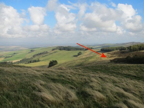 Castleward from Kinpurney Hill, with route mark