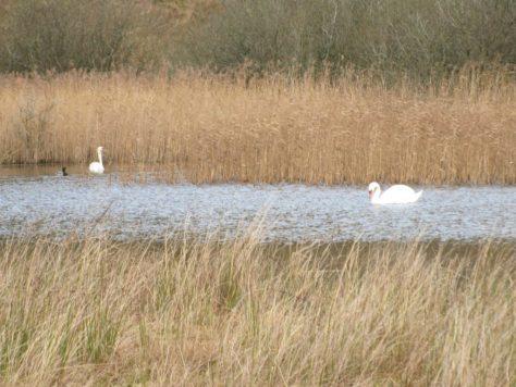 Lochindores Loch