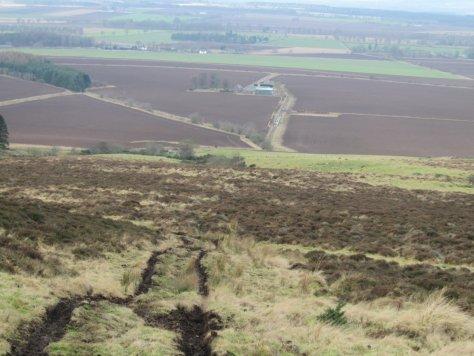 Descent to Fairgreen from Little Dunsinane