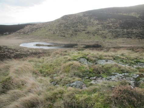 Source of the Den Burn from Little Dunsinane
